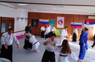 Семинар аикидо академије